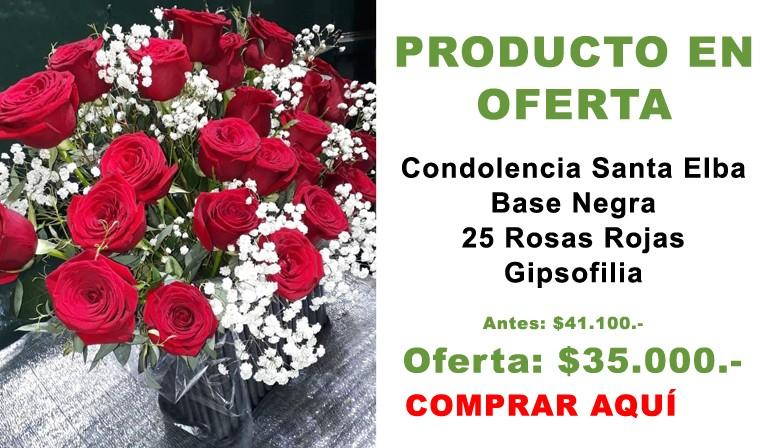 Oferta Condolencia Santa Elba