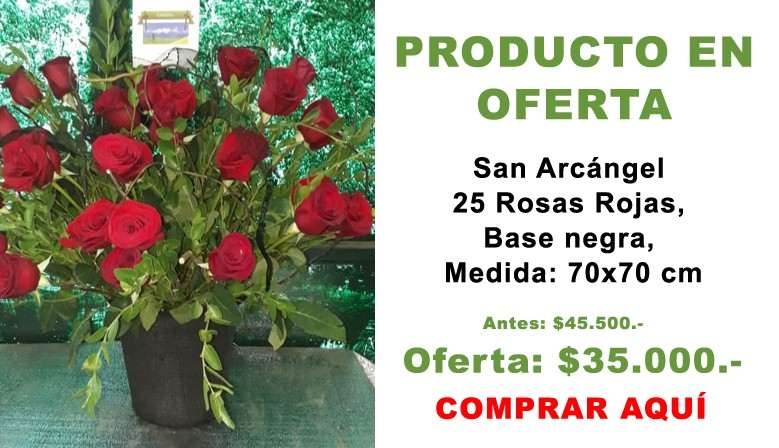 Oferta San Arcángel 25 Rosas